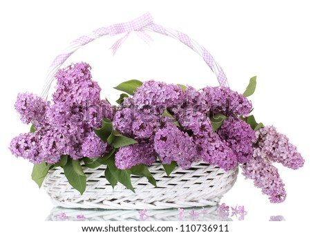 beautiful lilac flowers in basket isolated on white - stock photo
