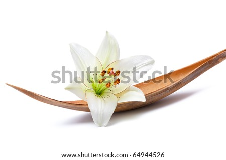 Beautiful lily flower set on a dried coco palm leaf, isolated on white - stock photo