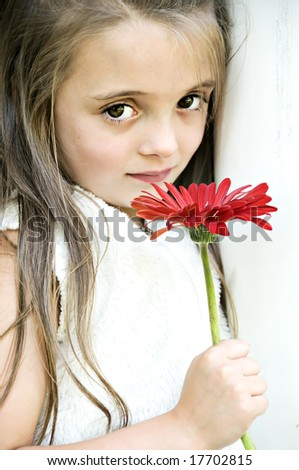 Beautiful little girl holding a red gerber daisy. - stock photo