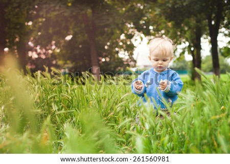 beautiful little kid walks on the field. Smiling girl in a blue blouse spring meadow. Nature walks. Picnic. Outdoors.Cute little child on the meadow in spring day  - stock photo