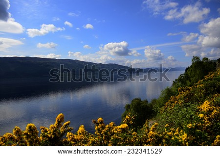 Beautiful Loch Ness Scotland with yellow Gorse flowers on the bank. - stock photo
