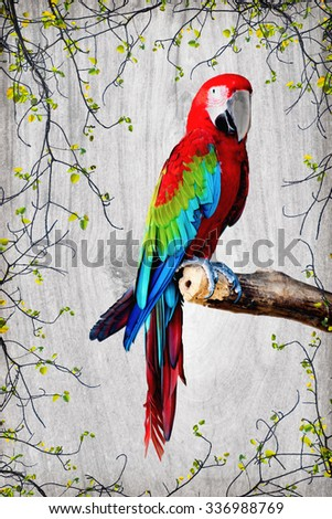 beautiful macaw parrot watercolor on wood texture and branch border background. - stock photo