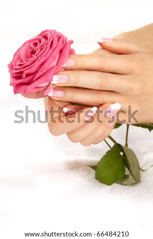 Beautiful manicure nails with a rose - stock photo
