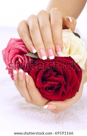 Beautiful manicure nails with roses - stock photo