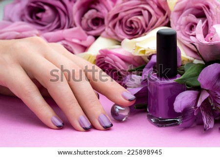 Beautiful manicure, polish is a violet color. Flower background.