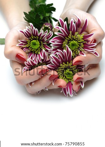 Beautiful manicured hands with bunch of exotic purple flowers. isolated - stock photo