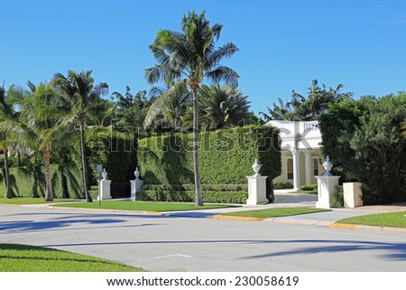 Beautiful manicured hedges on a pretty street - stock photo