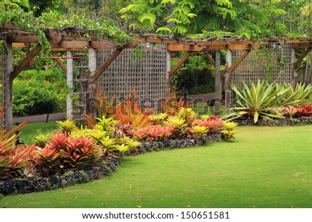 Beautiful, manicured tropical garden with flowering plants and green lawn. - stock photo