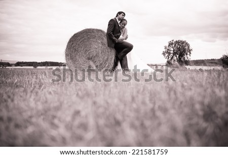 Beautiful married couple relaxing in an open field. Love and wedding concept - stock photo