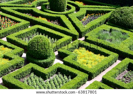 Beautiful maze garden - stock photo