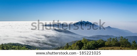 beautiful mist flowing on valley at doi inthanon national park of chiang mai, thailand