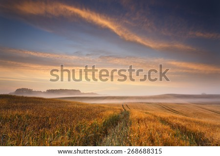 Beautiful Misty Sunrise Landscape Field in North Poland/ Morning Glory Sky And Fields - stock photo