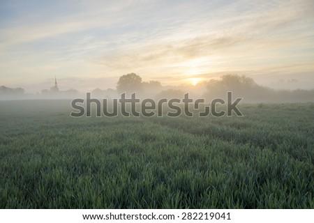 beautiful, misty sunrise on a field near the village  - stock photo