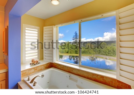 Beautiful modern colorful tub with lake view.