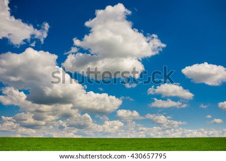 Beautiful morning green field with blue heaven - stock photo