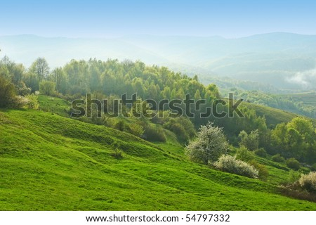 Beautiful morning summer hills with forest and haze - stock photo