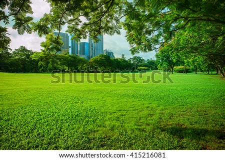beautiful morning sun shining light in public park with green grass field and green fresh tree plant perspective use as copy space and natural background,backdrop - stock photo