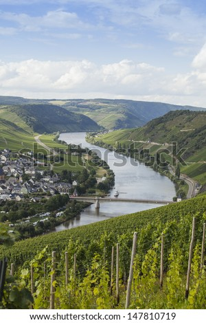 Beautiful Mosel valley with vineyards in Germany - stock photo