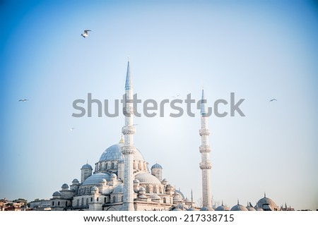 beautiful  mosque in a sunny day in Istanbul, Turkey - stock photo