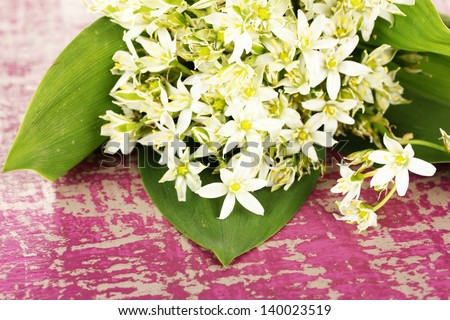 Beautiful mountain daffodils in  color vase, on color wooden background