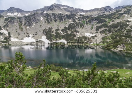 Beautiful mountain lake in green pine forest in spring
