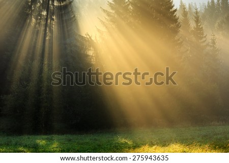 Beautiful mountain landscape coming out of a morning mist - stock photo
