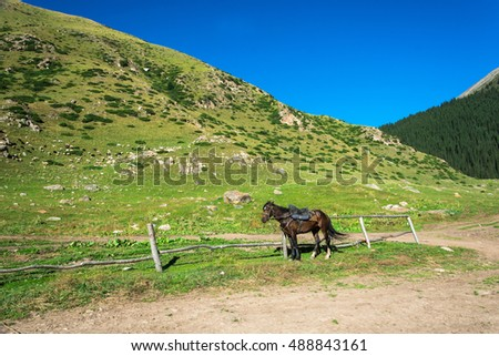 Beautiful mountain landscape with horses in the foreground on a Sunny summer day, Kyrgyzstan.