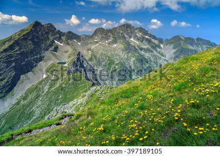 Mountain ridge stock images royalty free images vectors beautiful mountain ridges and spring flowers field with negoiu peak in backgroundfagaras mountains sciox Gallery