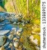 Beautiful Mountain River at the Riverside Park. North Vancouver, British Columbia, Canada. - stock photo