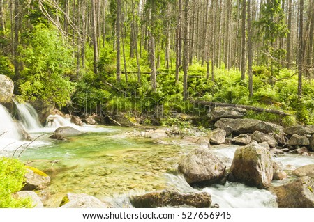 beautiful mountain river with clean water