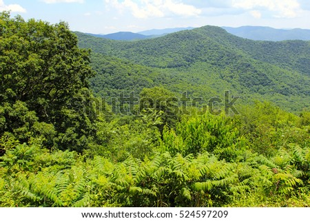 Beautiful mountains landscape at summer.Blue Ridge Parkway National Park.