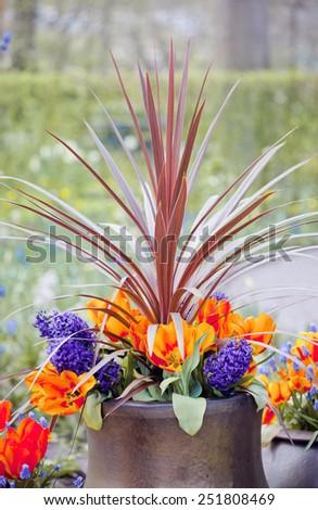 Beautiful multiflowers bed in garden, Holland - stock photo
