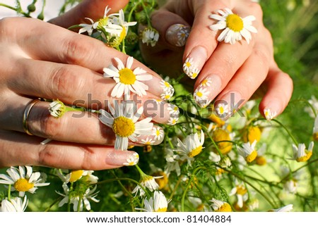 Beautiful nail design. Woman hands with camomile flowers