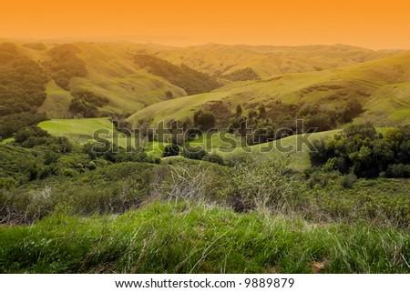 Beautiful Napa Valley Landscape, California, USA - stock photo