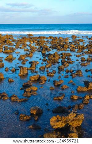 Beautiful natural beach on Lanzarote - stock photo