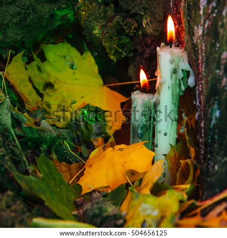 beautiful natural decor for autumnal holiday, old dry maple leaves, warm candle light