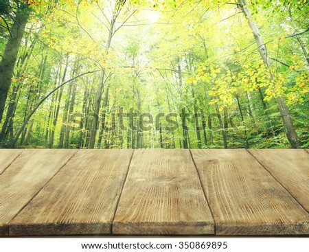 Beautiful nature background with wooden floor
