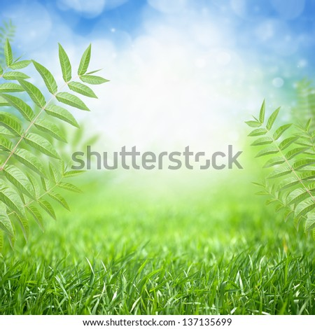 Beautiful nature eco background - green grass, leaves, bright sun, blue sky, green energy - stock photo