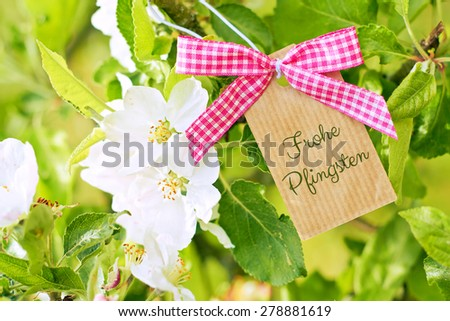 beautiful nature greeting card background - german for happy pentecost - stock photo