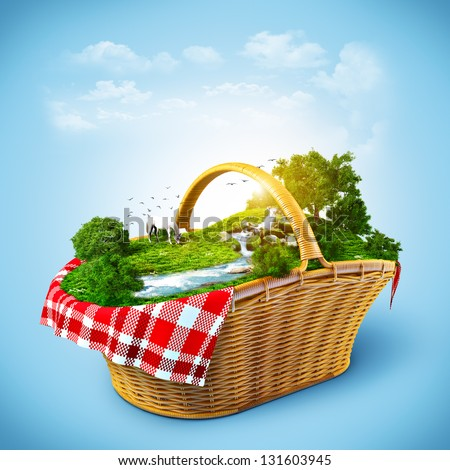 Beautiful nature in the basket. Rest out of town - stock photo