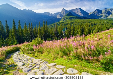 Beautiful nature landscape Gasienicowa Valley trail High Tatra Mountains national park. Carpathians, Poland - stock photo