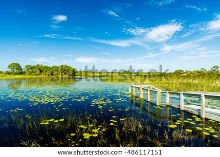 Beautiful nature preserve in Port Saint Lucie Florida.