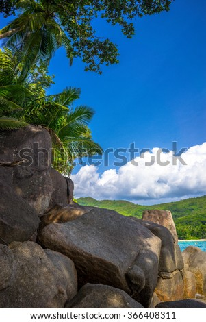 Beautiful nature scenery and foliage on Mahe in the Seychelles - stock photo