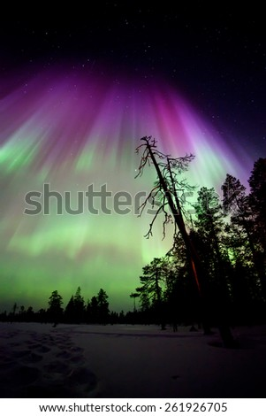 Beautiful Northern lights in Lapland of Finland - stock photo