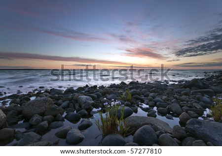Beautiful ocean view with windblown flowers in the foreground. - stock photo