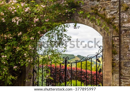 Beautiful, Old Garden Gate With Climbing Roses