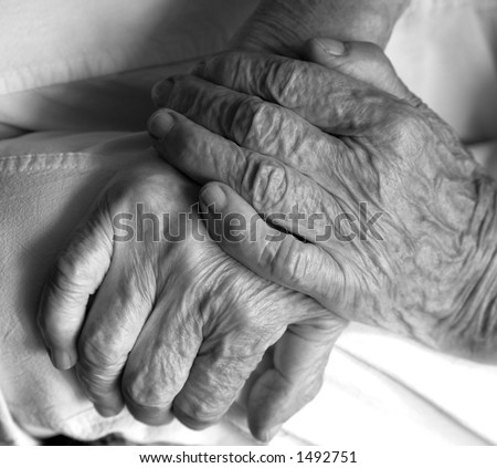 beautiful old lady's hands