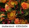 beautiful orange flowers in autumn light - stock photo