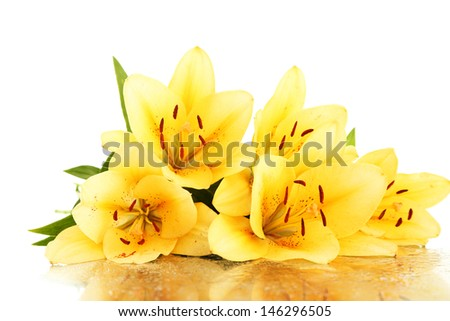 Beautiful orange lilies, isolated on white - stock photo