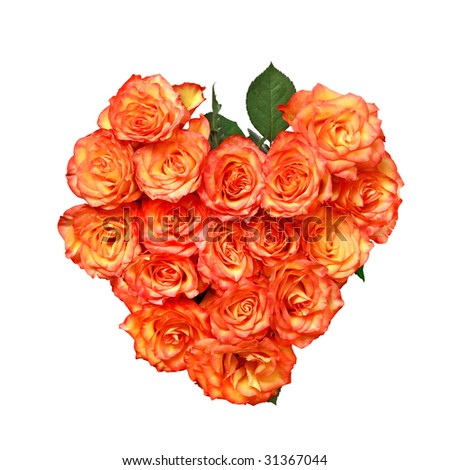 Beautiful orange roses. Valentine's day heart shape bouquet. Isolated on white - stock photo